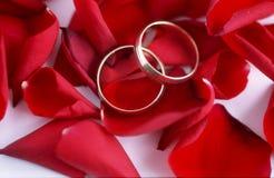 9 δαχτυλίδια Στοκ φωτογραφία με δικαίωμα ελεύθερης χρήσης