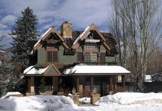 9 домов осины Стоковые Фото