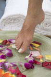 9 aromatherapy英尺温泉水 免版税库存照片
