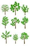 9 bomen Royalty-vrije Stock Afbeeldingen