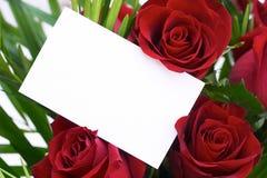 9 czerwona róża Fotografia Stock