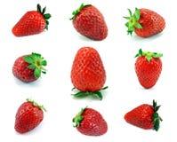 9 enkla jordgubbar för nytt val Arkivbild