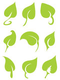 9 Green Vector Leaves Royalty Free Stock Photos
