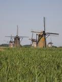 9 holländska kinderdijkwindmills Arkivfoto
