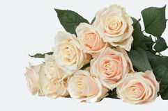 9 light pink roses. Armful of roses on the table. isolated image on white background Stock Photo