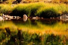 9 merced flod Royaltyfri Bild