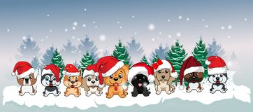 Free 9 Puppies Of Different Breeds In Red Hats With White Pompons On The Background Of The Winter Landscape. Stock Photography - 121692582