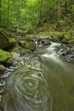 9 rzeka Obraz Stock
