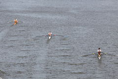 98th Primatorky rowing race Royalty Free Stock Image