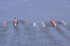 98th Primatorky rowing race Royalty Free Stock Photo