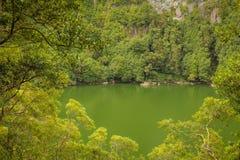 Açores海岛绿色海岛 图库摄影