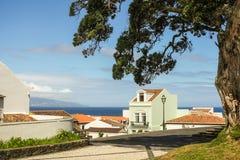 Açores ö den gröna ön Arkivfoton