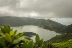 Açores ö den gröna ön Arkivbild