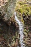 Ação congelada cachoeira Imagens de Stock Royalty Free