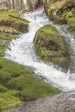 Ação congelada cachoeira Imagens de Stock