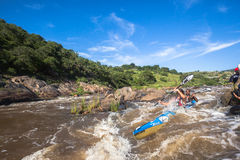 Ação da corredeira da raça da canoa Imagem de Stock