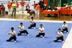 Ação da equipe de Wushu imagens de stock royalty free