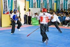 Ação da luta da vara (Silambam) Fotos de Stock