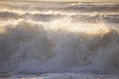 Ação da onda Imagens de Stock Royalty Free
