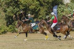 Ação das mulheres do cavalo de PoloCrosse Fotos de Stock Royalty Free