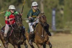 Ação das mulheres dos cavalos da Polo-cruz Fotos de Stock