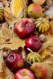 Ação de graças do feriado do outono Ainda vida com abóbora e maçãs, Fotografia de Stock