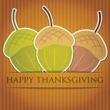 Ação de graças feliz! Imagens de Stock