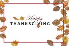 Ação de graças feliz no fundo branco com folhas e quadro de outono Fotografia de Stock Royalty Free