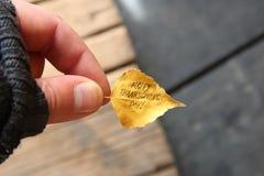 Ação de graças feliz - texto Fotos de Stock