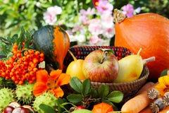 Ação de graças, frutos do outono Imagem de Stock Royalty Free