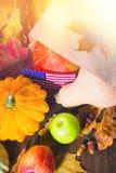 Ação de graças nos estados Abóboras da colheita do outono, maçãs nos EUA Bandeira americana Imagem de Stock