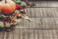 Ação de graças ou cartão do conceito do Dia das Bruxas pumpk bonito Foto de Stock Royalty Free