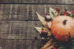 Ação de graças ou cartão do conceito do Dia das Bruxas pumpk bonito Imagem de Stock Royalty Free