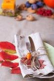Ação de graças que janta o lugar Imagem de Stock Royalty Free