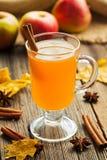 Ação de graças quente caseiro tradicional da sidra de maçã Foto de Stock Royalty Free