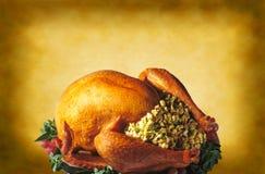 Ação de graças Turquia no fundo morno Foto de Stock