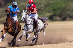 Ação de Polo Riders Girl Horse Play Fotografia de Stock