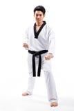 Ação de Taekwondo Fotos de Stock