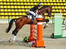 Ação disparada do obstáculo de salto do cavalo Imagem de Stock Royalty Free