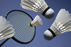Ação do Badminton Foto de Stock Royalty Free