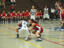 Ação do basquetebol Imagem de Stock