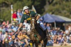Ação do cavaleiro do campeonato do mundo de PoloCrosse Fotografia de Stock