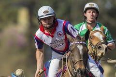 Ação do cavaleiro do campeonato do mundo de PoloCrosse Fotos de Stock