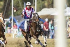 Ação do cavaleiro do campeonato do mundo de PoloCrosse Imagens de Stock Royalty Free