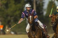 Ação do cavaleiro do campeonato do mundo de PoloCrosse Foto de Stock