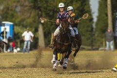 Ação do cavaleiro do campeonato do mundo de PoloCrosse Imagem de Stock