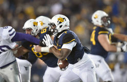 2014 ação do futebol do NCAA - estado de WVU-Kansas Imagem de Stock
