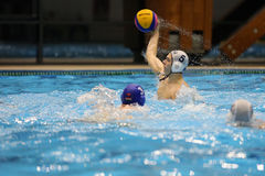 Ação do polo aquático - jogando a bola Fotografia de Stock Royalty Free