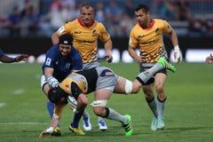 Ação do rugby Imagem de Stock