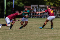 Rugby Glenwood do Flyhalf da bola dos jogadores Imagem de Stock Royalty Free